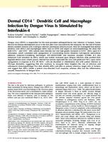 Dermal CD14 + Dendritic Cell and Macrophage Infection by Dengue Virus Is Stimulated by Interleukin-4